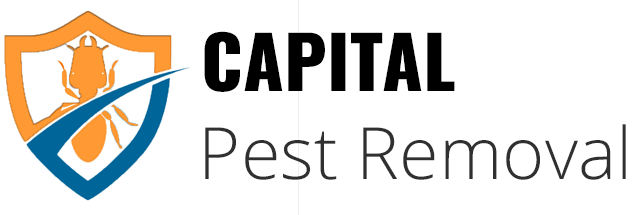 Capital Pest Removal in Albany New York,