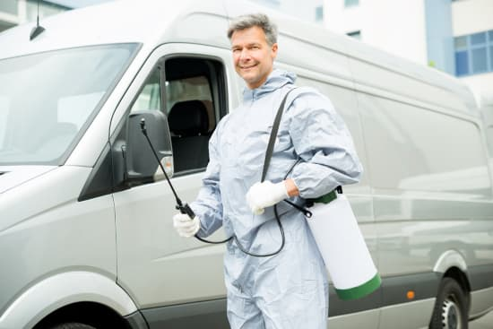 About Us: Capital Pest Removal Albany NY Pest Treatment Service