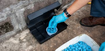 Commercial Pest Control Plan - Capital Pest Removal Albany NY