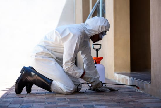Commercial Pest Control - Capital Pest Removal Albany NY